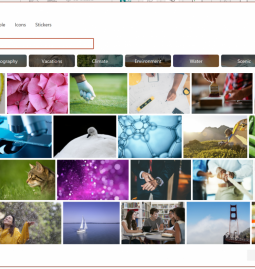 Microsoft provides Windows Office users with 8,000 copyright-free images and icons